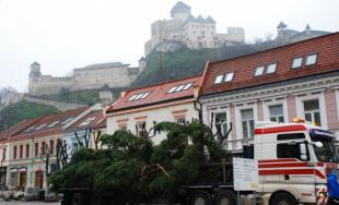 Vianočný stromček už zdobí centrum Trenčína, rozsvieti ho Mikuláš
